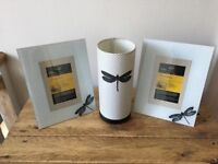 Dragonfly Picture Frames (6x4) and Lamp (with Shade) - insect, glass, bedroom