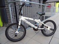 """Raleigh BURNER BMX Kids Bike 20"""""""