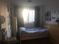 Lovely spacious room in Battersea Park (for 2 weeks only)