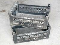 Transplant Boxes For Sale