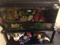 Fish tank for sale complete