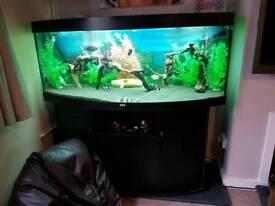 450l fish tank