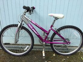 Raleigh Krush purple bicycle with eye ball bell-hardly used and in very good condition