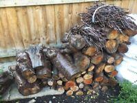 Seasoned Logs for sale