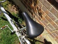 Bickerton Portable Bike