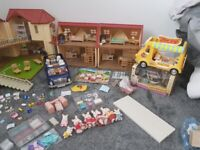Huge Sylvanian families bundle
