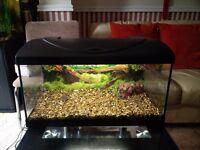 54L Fish tank aquarium