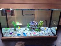 FISH TANK with led light,gravel,ornaments,size is 50x25x36 cm about 40 litres