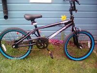BRAND NEW OUT THE BOX. MUDDYFOX WHIPLASH GYRO BMX, FROM AGE 8 TO ADULT**FREE DELIVERY HULL ONLY**