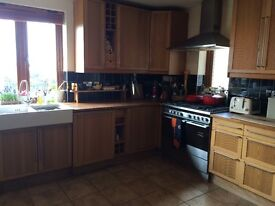 Complete IKEA kitchen with Fisher & Paykel range and hood and double butler sink