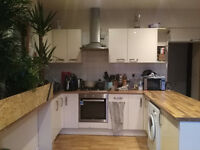 Amazing flat share in montpelier/ cheltenham road! 375 per month