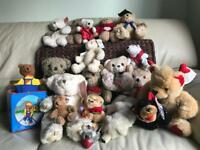 Collection of 19 Teddy bears