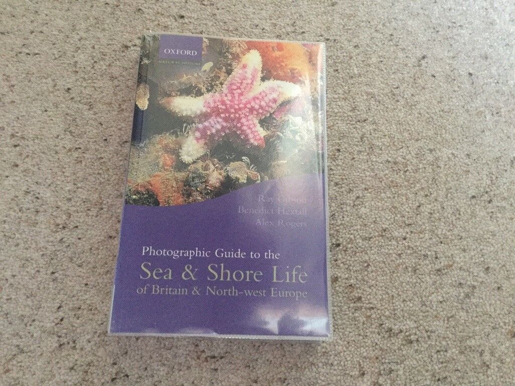 Sea & Shore Life of Britain & North West Europe - a photographic guide