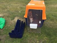 P 100 FLIGHT CRATE FOR LARGE DOG FOR SALE
