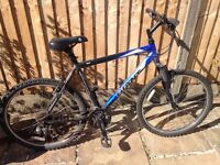 Giant Rock Mountain Bike
