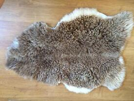 rare breed sheepskin
