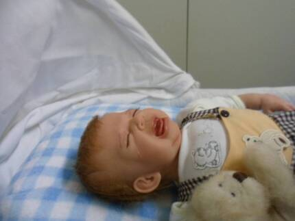 Reborn doll SCREAMING baby boy FREE postage Johnsonville East Gippsland Preview