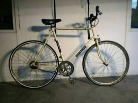 Cheap Single Speed Road Bike