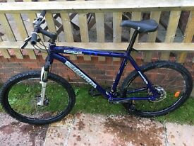 Bianchi Doss 6100 mountain bike. 21inch frame (large)