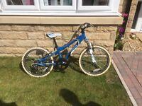 Blue and white Dawes bike