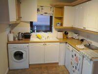 Kitchen units. Gloss white finish, beech worktop.