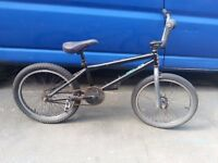 Wethepeople BMX Stunt Bike