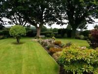 All round gardening services