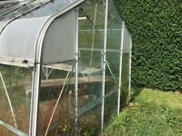 FREE! Old Green House: Free to good home
