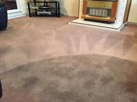 Carpet and sofa/upholstery cleaning