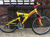 Ammaco duo mountain bike