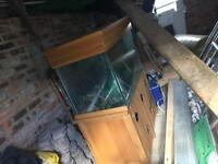 Large hand made wooden fish tank with pump and bulbs
