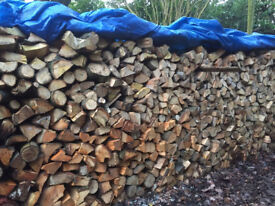 Fire Wood a Mixture of Soft and Hard Wood Logs