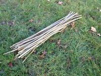 Live Willow Cuttings