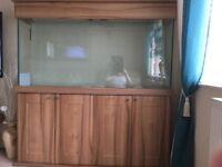Aquarium for sale.