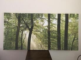 Tree canvas picture
