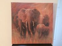 Brand New Elephant Print Canvas from Dunelm 50 x 50cm