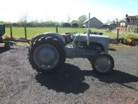 1940's GREY FERGIE TRACTOR, PETROL CONVERTED TO TVO, RECONDITIONED ENGINE AND NEW TYRES