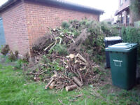 LARGE QUANTITY OF CONIFER LOGS AND FOLIAGE FREE!!!!!!!!!!!!!!!