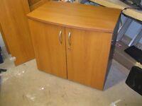 Mahogany Office Cupboard
