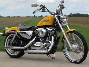 2013 harley-davidson XL1200V Seventy-Two   Chrome Yellow Pearl & London Ontario image 1