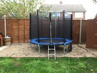 8ft Trampoline, with ladder and cover, excellent condition