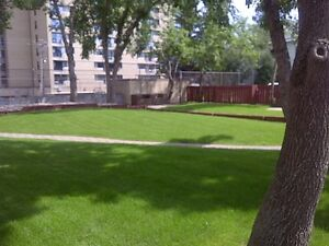 Great Incentives, renovated 2 bdrms in new Brewery District Edmonton Edmonton Area image 12