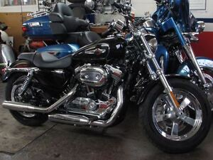 2014 harley-davidson XL1200C Custom   Like out of the Crate 875
