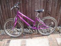 Apollo Outrider Ladies Bike