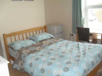 NEWLY DECORATED DOUBLE ROOM AVAILABLE!