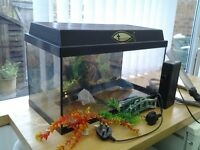 Fish tank and pump and extras
