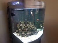 Marine 130 litre Fish Tank