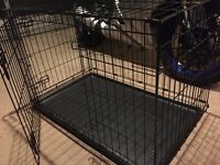 Metal Fold Flat Dog Crate With Plastic Tray Large - ideal for transport