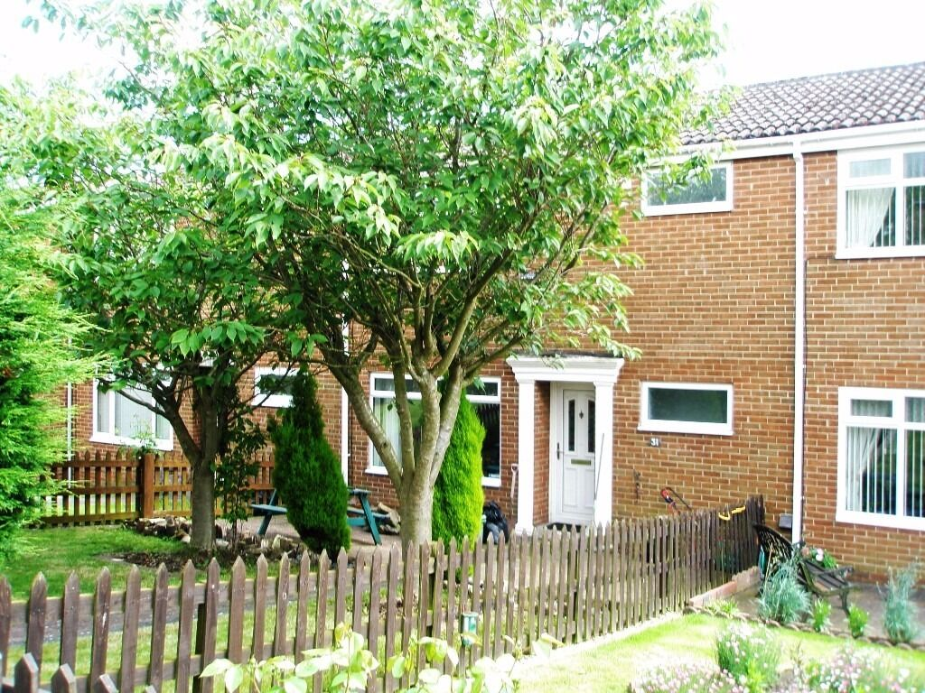 3 Bedroom Mid Link Home Ideal For The Family, Realistically Priced At £450 Per Month, Sorry No DSS.