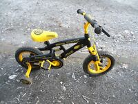 Kiddies Mountain Bike